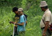 Providing Technical support for forest carbon assessment in Sacred Himalayan Landscape and Terai Arc Landscape